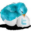 bluebird_128x128